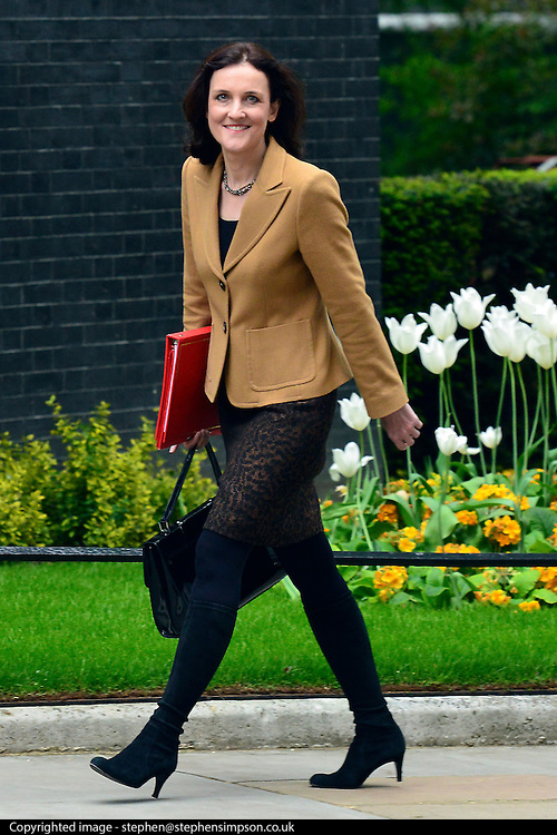 © Licensed to London News Pictures. 21/05/2013. Westminster, UK. Theresa Villiers, Conservative MP, Secretary of State for Northern Ireland. Ministers arrive for a Cabinet meeting at Downing Street today 21 May 2013. Photo credit : Stephen Simpson/LNP