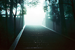 China, Sichuan, 2007. Light seems to take on magical qualities as it pours through an opening in the mist. Emei Shan is a mountain range famous for its cloud forest atmosphere..