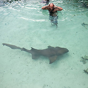 An Israeli tourist prepares to grap a captive nurse shark (Ginglymostoma cirratum) at a restaurant in Isla Mujeres.  The sharks are used like this as a gimmick to attract people to the restaurant.  Isla Mujeres, Mexico, August 6 2009. (Photo/William Byrne Drumm)