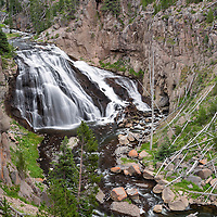 View of the cascading Gibbon Falls, in the central Norris District on the Gibbon River. Yellowstone National Park, Wyoming.