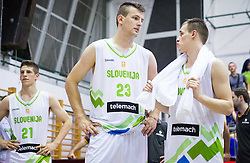 Alen Omic of Slovenia and Klemen Prepelic of Slovenia during friendly basketball match between National teams of Slovenia and Ukraine at day 3 of Adecco Cup 2014, on July 26, 2014 in Rogaska Slatina, Slovenia. Photo by Vid Ponikvar / Sportida.com