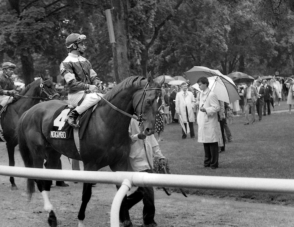 Paddock post parade for the Belmont Stakes with Mogambo, ridden by Jose Santos. 1986.