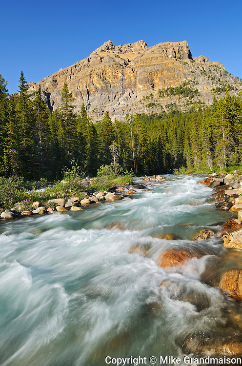 Mosquito Creek at Rocky Mountains near Bow Summit at sunset<br /> Banff National Park<br /> Alberta<br /> Canada