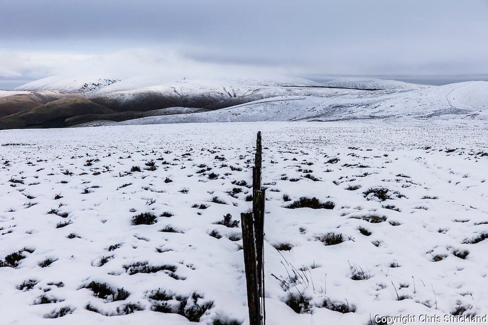 Mozie Law, Cheviot Hills, Anglo Scot Border, UK. 13th December 2015. Snow either side of the fence line marking the Anglo Scot Border along the Pennine Way on the Cheviot Hill Mozie Law (552m).