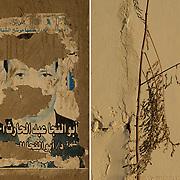 Egypt, Luxor. November/15/2008.