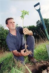 Man planting tree in field,