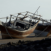 Oman, Ra's al-Hadd Lagoon. January/21/2008...Traditionally built dhows resting in the Ra's al-Hadd lagoon at low tide.