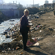 A roma gypsy woman trying to clean the surrounding area of her habitation by sweeping rubbish to the river that runs through the  roma ghetto of Kjustendil.  The river runs by the sheds where the roma people live and it has become the place where uncollected refuse is thrown into. Kjustendil, Bulgaria