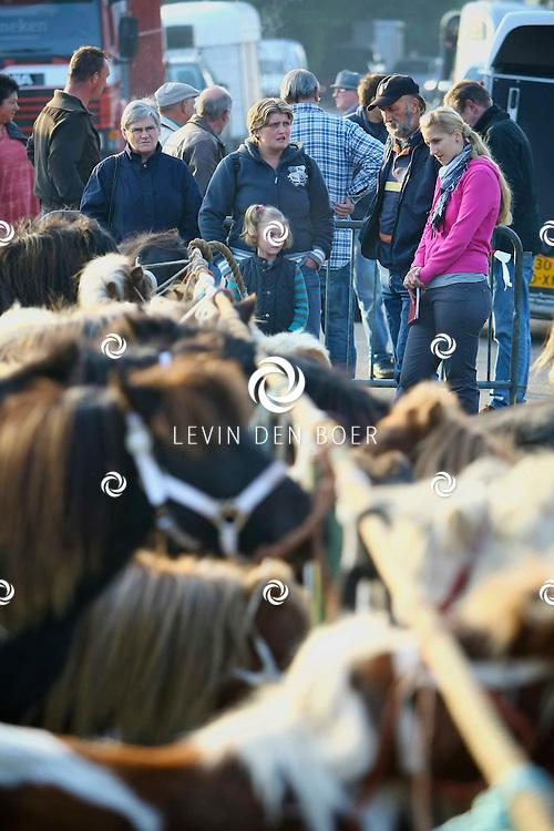BRAKEL - De jaarlijkse Ponymarkt in Brakel met feestelijke activiteiten. FOTO LEVIN DEN BOER - PERSFOTO.NU