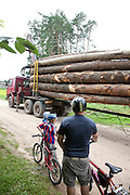 Polish bicyclers encounter logging truck on road. Zawady Central Poland
