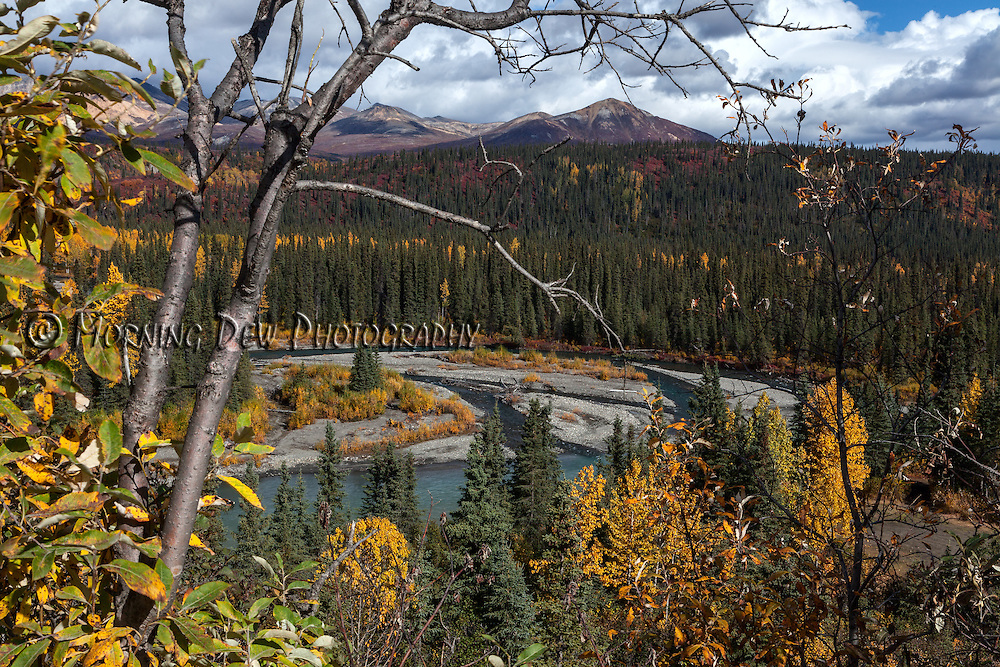 Autumn colors blanket the landscape along the Denali Highway at the junction of Wells Creek and the Nenana River.