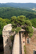 Schloss Auerbach, Burgruine, Blick auf Odenwald, Bensheim, Bergstraße, Hessen, Deutschland