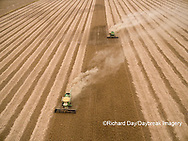 63801-08808 Soybean Harvest, 2 John Deere combines harvesting soybeans - aerial - Marion Co. IL