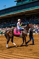 Peruvian jockey Miguel Mena, Keeneland Racecourse, Lexington, Kentucky USA.