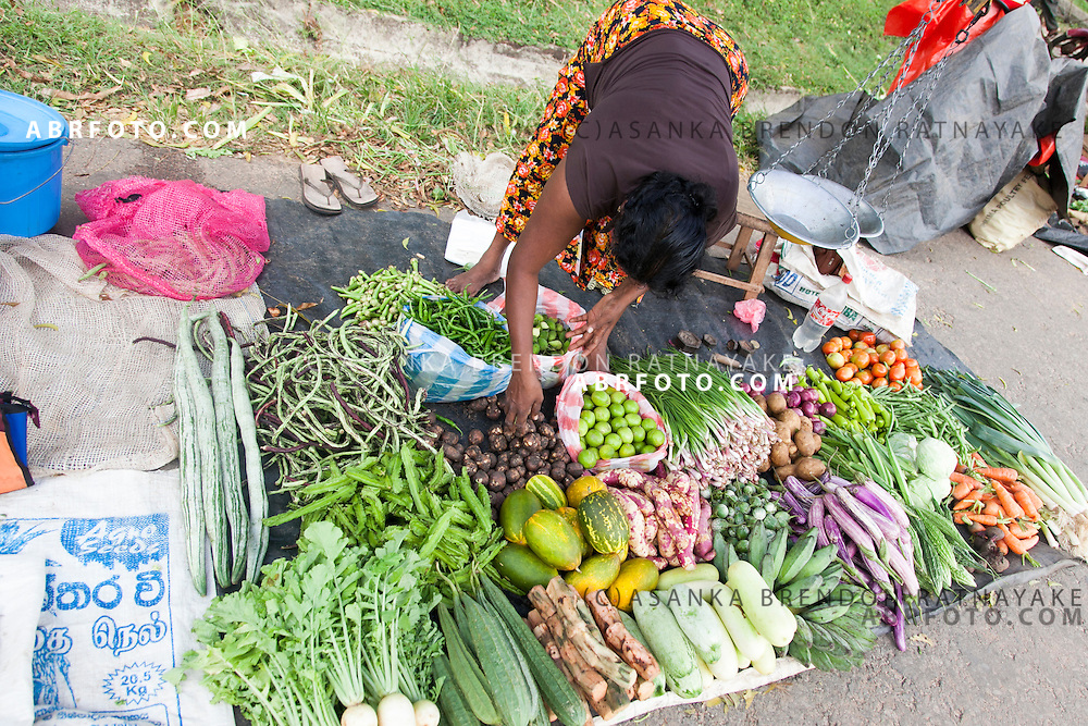 A women sells Women selling vegtables  at a village market in NegomboNegombo is a major city in Sri Lanka, located on the west coast of the island and at the mouth of the Negombo Lagoon