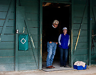 HALLANDALE BEACH, FL - JANUARY 26: Bob Baffert and Dana Barnes talk in the barn at the Pegasus World Cup Invitational at Gulfstream Park Race Track on January 26, 2018 in Hallandale Beach, Florida. (Photo by Alex Evers/Eclipse Sportswire/Getty Images)
