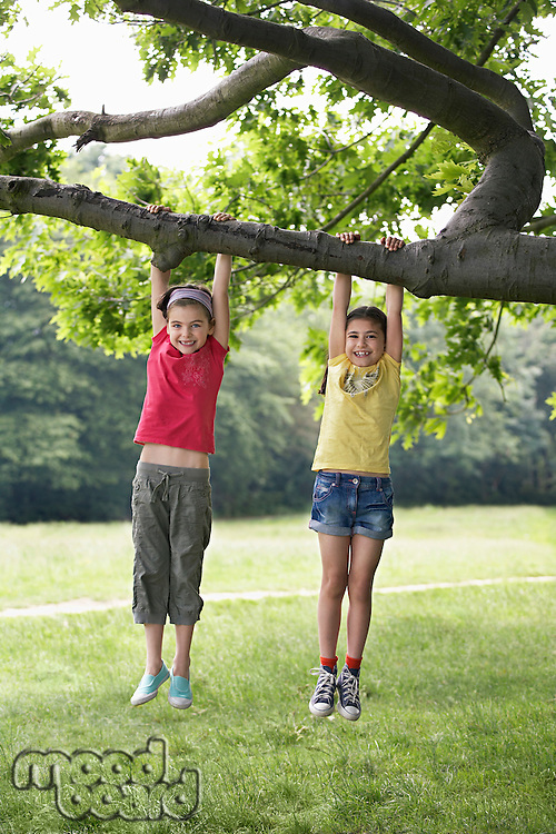Two girls (7-9) hanging from tree