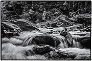 El Yunque National Rain Forest, Creek at Angelito's Trail, Rio Grande, Puerto Rico