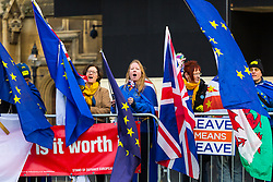 """Remain protesters chat slogans as a """"leave Means Leave"""" poster is partially obscured by their flags. London, January 14 2019."""