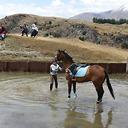 Millie Harrex, 12 from Alexandra, riding Madame Satine, comes to grief at the water jump during the Wakatipu One Day Horse Trials at the Pony club grounds, Queenstown. The one day  equestrian event included showcase dressage, show jumping and cross country.  Queenstown, Otago, New Zealand. 15th January 2012. Photo Tim Clayton