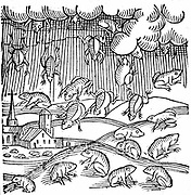 Rain of frogs recorded in 1355.  From Conrad Lycosthenes 'Prodigiorum ac ostentorum chronicon', Basel, 1557. Woodcut.