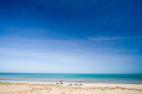 The pristine country of a remote beach on the west coast of Cape York in far northern Australia, home to the Mapoon Turtle Rescue Project where volunteer ecotourists can help save endangered species.