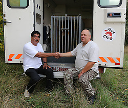 Rescued  - Masha the brown bear. <br /> Masha the bear rescued from a group of mafia who ran a bear bating tournaments. Dr Amir Khalil shaking hands with the owner who handed over Masha the bear after months of haggling, Ukraine, Monday, 2nd September 2013. Picture by Roger Allen / i-Images