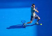 Tennis - Damir Dzumhr