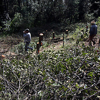 Lerma, México.- Habitantes de San Francisco Xochicuautla realizaron una caravana en defensa del bosque Otomí Mexica, en donde la empresa Autovan realiza la tala de cientos de árboles en territorio comunal Otomí de San Francisco Xochicuautla. Agencia MVT / Beatriz Rodríguez
