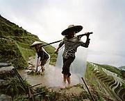 Les rizie?res en terrasses:  Longji Titian (nom que l'on donne a? ce complexe de terrasses) dans la province de Guangxi. Les habitants font partie des Zhuang, la minorite? ethnique de Chine la plus nombreuse..