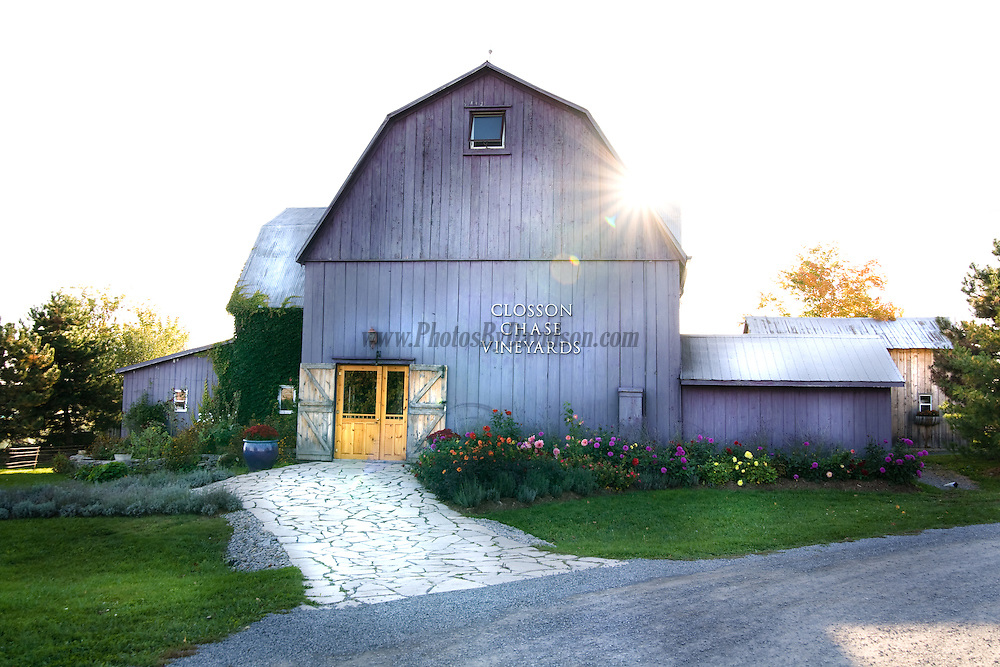 A late afternoon photogrpah of Closson Chase Vineyards in Prince Edward County.<br />