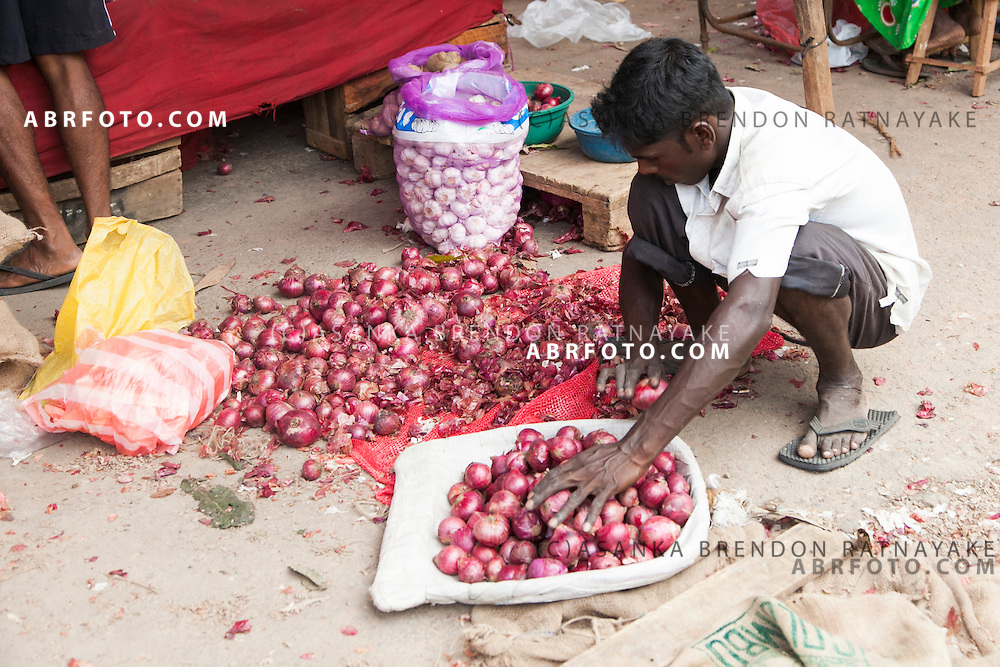 A man sells red onionsat a village market in Negombo. Negombo is a major city in Sri Lanka, located on the west coast of the island and at the mouth of the Negombo Lagoon