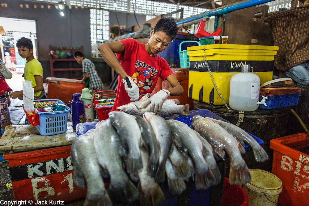 09 JUNE 2014 - YANGON, MYANMAR: A worker guts and fillets fish in the San Pya Fish Market (also spelled Sanpya). San Pya Fish Market in Yangon is one of the largest wholesale fish markets in Yangon. The market is busiest in early in the morning, from before dawn until about 10AM.    PHOTO BY JACK KURTZ
