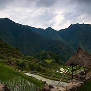 PHILIPPINES (Batad, Province of Ifugao). 2009. Refuge in the rice terraces of Batad.