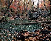 Cedar Creek Falls on Petit Jean Mountain in Arkansas