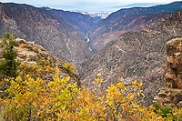 Looking west into the Black Canyon of the Gunnison  from Sunset Vew.  Black Canyon of the Gunnison National Park, Colorado.