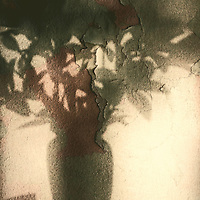 The modern and abstract montage of a shadow projection of a vase with flowers on a wall.