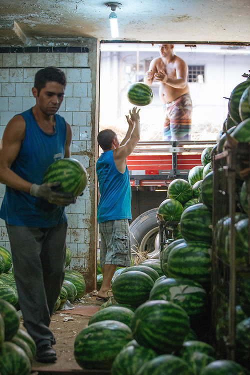 Men sort watermelons in Rio's CADEG Market.