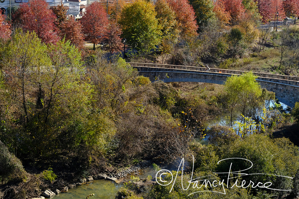 Photogaphed from the Watermark Building, this is Little Sugar Creek Greenway looking toward Morehead. Photographed from the Watermark Building, this is Little Sugar Creek Greenway looking toward Kings Court retail area on Kings Drive, near Morehead.