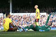 Watford forward Troy Deeney (9) can't believe Everton goalkeeper Jordan Pickford (1) made the save from his shot but the Everton keeper gets injured in the process during the Premier League match between Everton and Watford at Goodison Park, Liverpool, England on 17 August 2019.