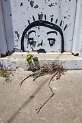 Graffiti face in doorway; artist unknown