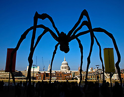 """London, England:  The giant legs of Louise Bourgeois's giant spider sculpture """"Maman"""" frame St. Paul's Cathedral, seen in the distance across the Thames River from the Tate Moderne museum.  Maman represents a female spider who carries her white marble eggs beneath her. Made of steel the sculpture stands nine metres (thirty feet) high and has a legspan of ten metres. The climactic work of a series of spiders made through the 1990s, Maman accesses Bourgeois' childhood anxieties and preoccupation with family relationships."""