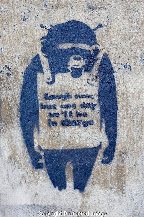 Blue chimpanzee spray paint wall art, Banksy