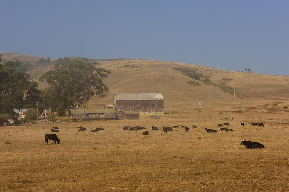 Ranch outside , Jenner,, California