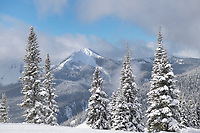 North Cascades in fresh winter snow. Manning Provincial Park British Columbia