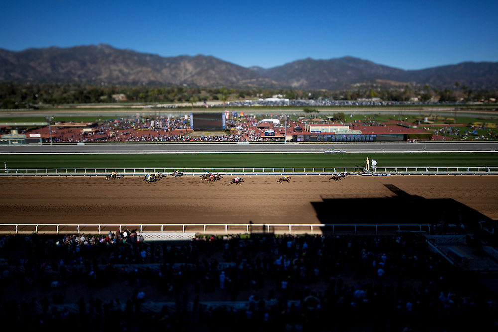 December 26 2014: Opening Day scenes at Santa Anita Park in Arcadia CA. Alex Evers/ESW/CSM