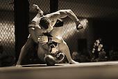 Chicago MMA