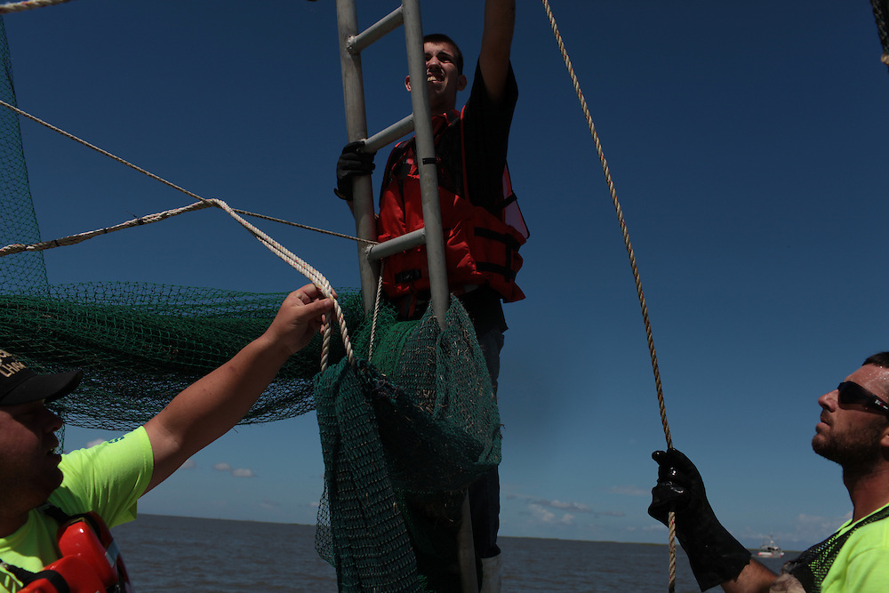 Eric Melerine, Mikey Labat and his brother Allen Labat pulling in hard boom around Pelican Island from Delacroix Island, LA August 30, 2010.