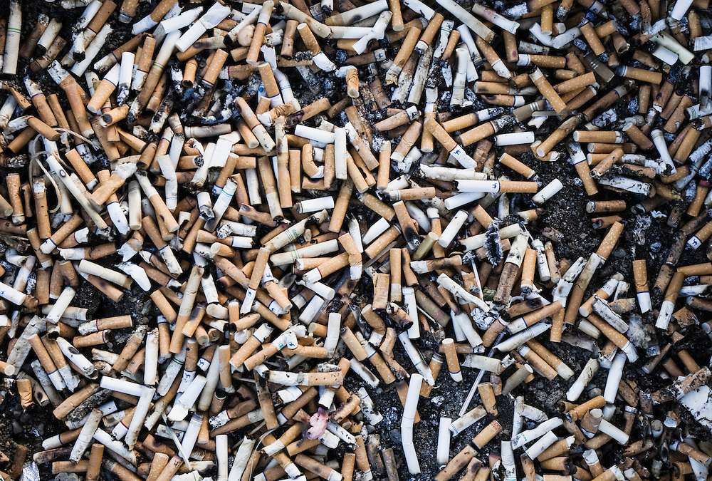 Closeup view of hundreds of discarded cigarette butts.