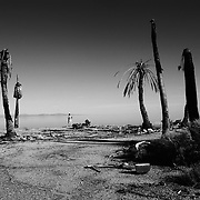 Located 100 miles East of San Diego in the Imperial Valley, The Salton Sea was created in 1905 when the Colorado River and its tributaries flooded. The floodwaters filled the valley basin, creating almost overnight the largest freshwater lake in California. In the 1950's and 60's, real estate developers worked to make Salton City the next Palm Springs/Lake Tahoe, laying entire street and electricity grids, planting trees, stocking the sea with millions of game fish and dredging wharves for speedboats and yachts to accommodate vacationers. However, little attention was paid to the health of the Sea itself. <br /> <br /> Chemical laden runoff from the surrounding agriculture of the Valley paired with rising salinity from evaporation poisoned the Salton Sea. By the 1990's fish and birds washed ashore in die offs numbering in the millions, creating a permanently foul stench in the air. Salton City, and the surrounding communities were largely abandoned to the elements. Much of the infrastructure still remains, with streets leading no where, docks over dry land and houses encrusted in salt.